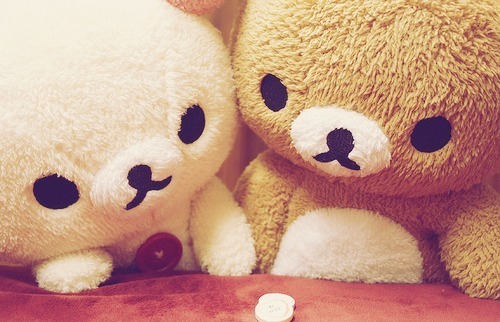bear-cute-lady-gaga-photography-rilakkuma-favim-com-174640.jpg